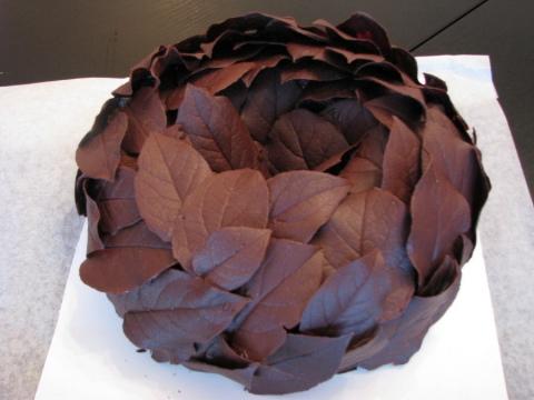čokoladni listići torta
